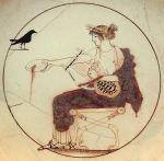 610px-Apollo_black_bird_AM_Delphi_8140