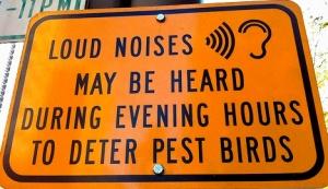 loud-noises2