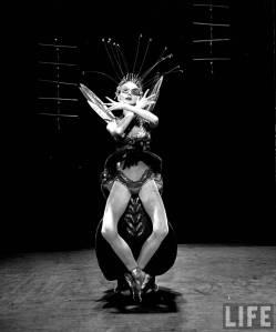 metamorphosis 1953 b
