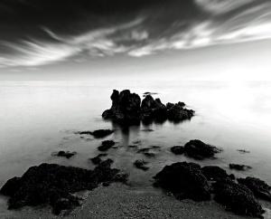 shore dark 1