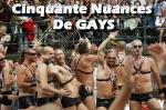 50 nuances de gays